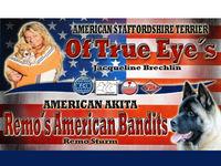Remo's American Bandits