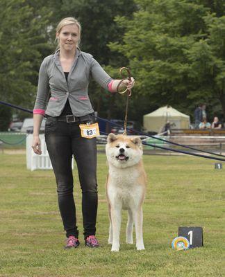 Ergebnisse 2015 CAC Münster-Nienberge - Fumiko of Shiroi na Suna