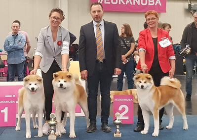 Ergebnisse 2019 - Herbstsieger Dortmund - Akita (BOB/BOS)