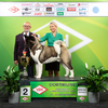 Ergebnisse 2019 - Bundessieger Dortmund - American Akita (BOB)