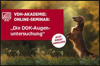 VDH Seminar - DOK