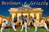 banner_bähring