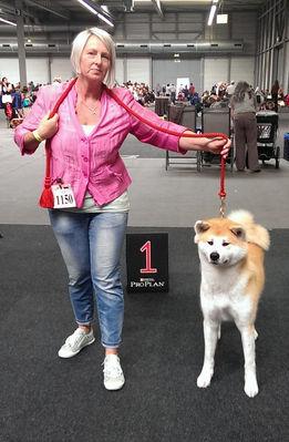 2014 CACIB Erfurt - A`Miyu of Shukeiyen Kensha