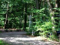 Akita Treffen: Spaziergang in NRW