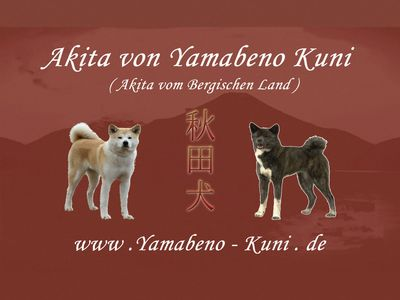 banner_kutzey