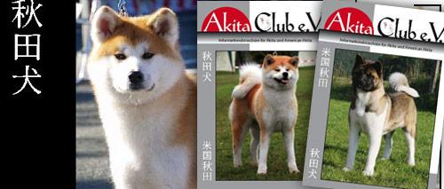 Mitglied werden - unser Magazin
