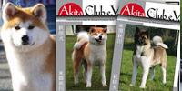 Der Club: Mitglied werden