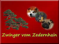 banner_weidauer