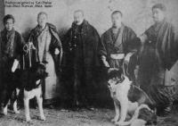 Herkunft und Geschichte